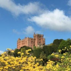 Powis_Castle_-_Copy.jpg